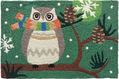 Picture of Winter Owl